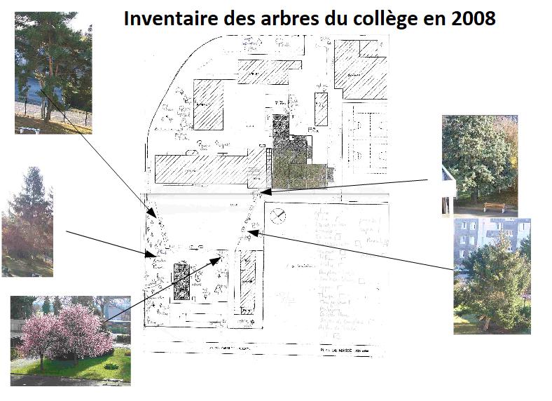 Biodiversité au collège Jules Renard – 10 ans après…