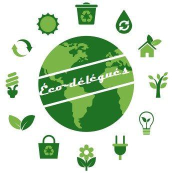 Réunion des Eco-délégués